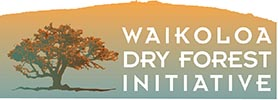 WDFI Applies for 21st Century Community Learning Center Grant